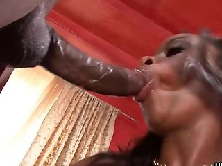 Kitty Hunter Had Xxx Fuck Session With Her Paramour